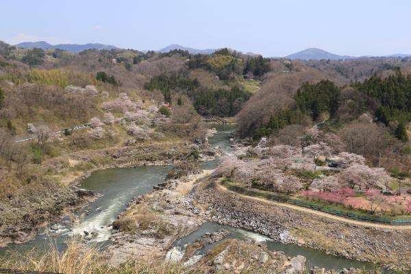 島山・稚児舞台 4月16日の様子
