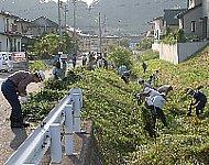草刈りの様子の写真