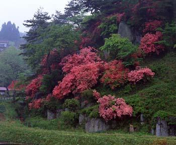 七尋石山の写真