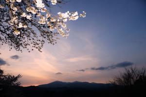 「春の山」部門最優秀賞:桜下遠望