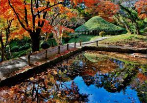霞ヶ城公園紅葉の写真