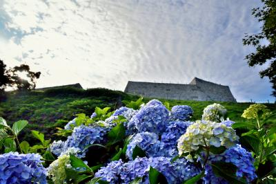 「夏」部門優秀賞 紫陽花飾る城の址