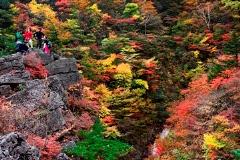 「秋」部門 秋の渓谷
