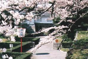 二本松城の写真