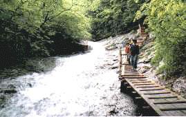 あだたら渓谷 奥岳自然遊歩道