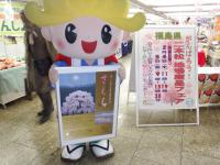 がんばろう!二本松地場産品フェアin新宿01
