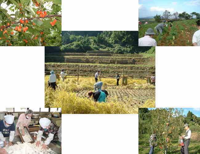 二本松の農業の様子の写真