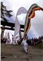 伝統を誇る日本一の五反幡行列05