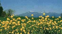 安達太良連峰の写真