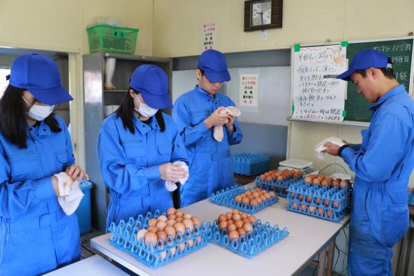 安達東高校の卵(磨き作業)