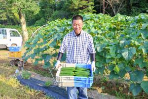 きゅうり農家2