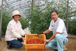 トマト農家3