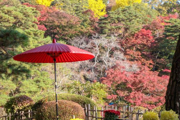 霞ヶ城公園紅葉2