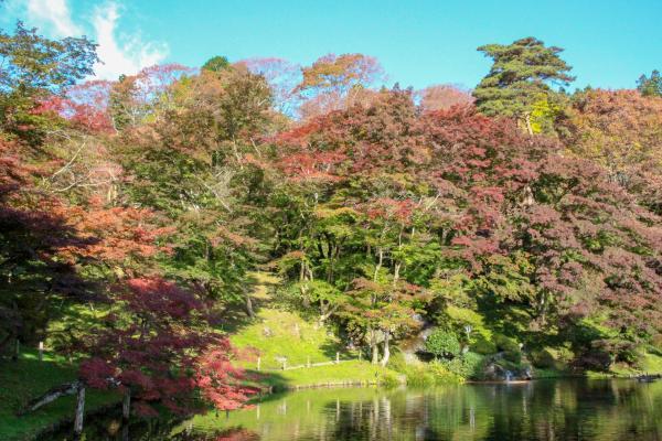 霞ヶ城公園紅葉3