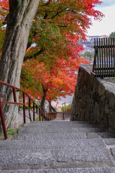 霞ヶ城公園紅葉5