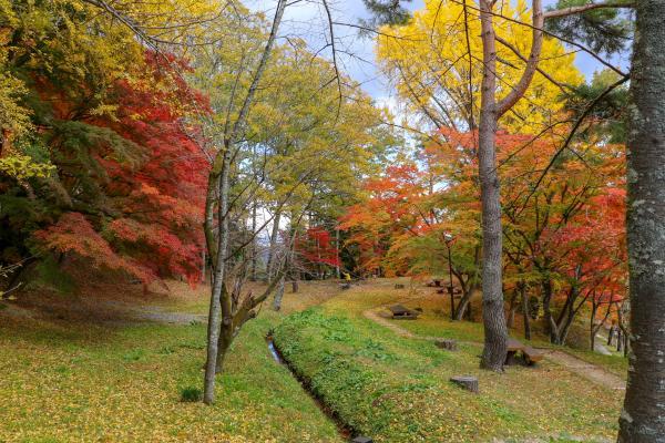 霞ヶ城公園紅葉10