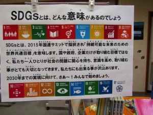 SDGsってどんなこと?
