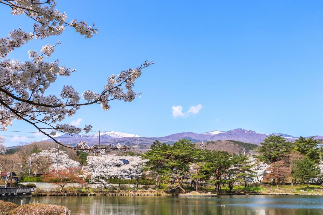 令和3年岳温泉鏡ヶ池と桜と安達太良山