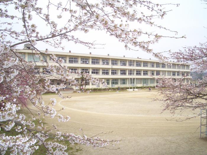 杉田小校舎写真